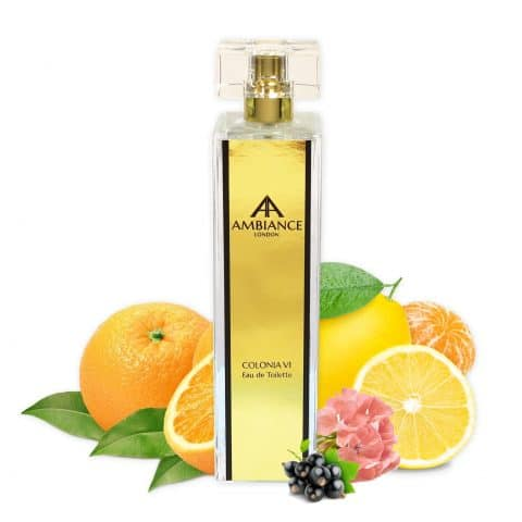 Gold Colonia VI 100ml