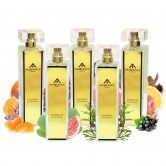 Gold Colonia Collection EDT & EDP