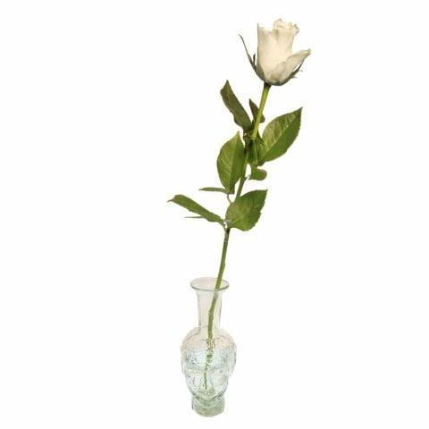 Transparent Tete Vase with rose