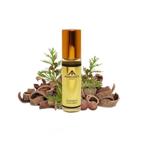 Gold Colonia IX handbag Eau de Parfum