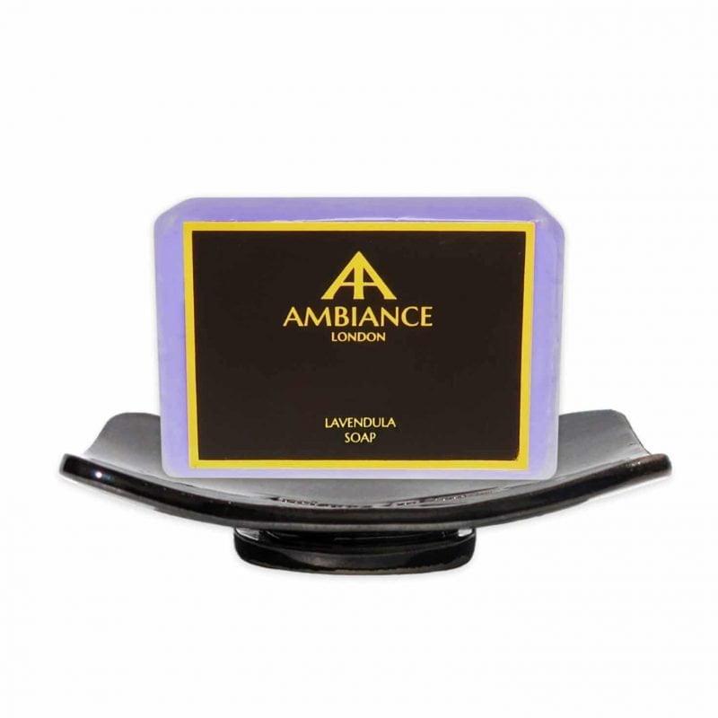 Ambiance Bronze Ceramic Soap Dish