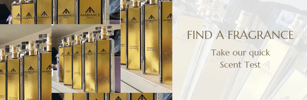 Ancienne Ambiance Perfume Finder