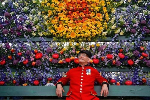 Chelsea Flower Show | Chelsea in Bloom 2019