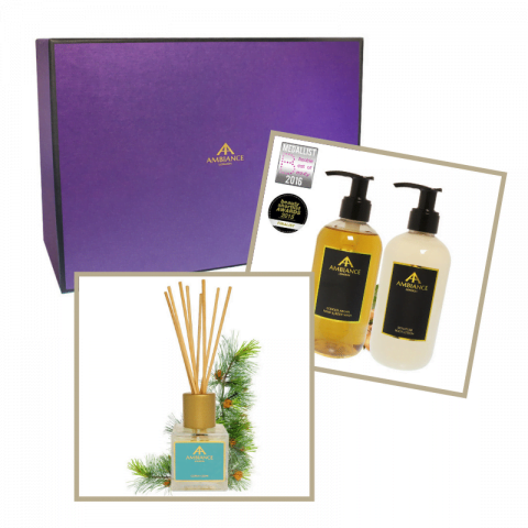 ancienne ambiance cedar diffuser - argan hand wash and hand lotion home gift set