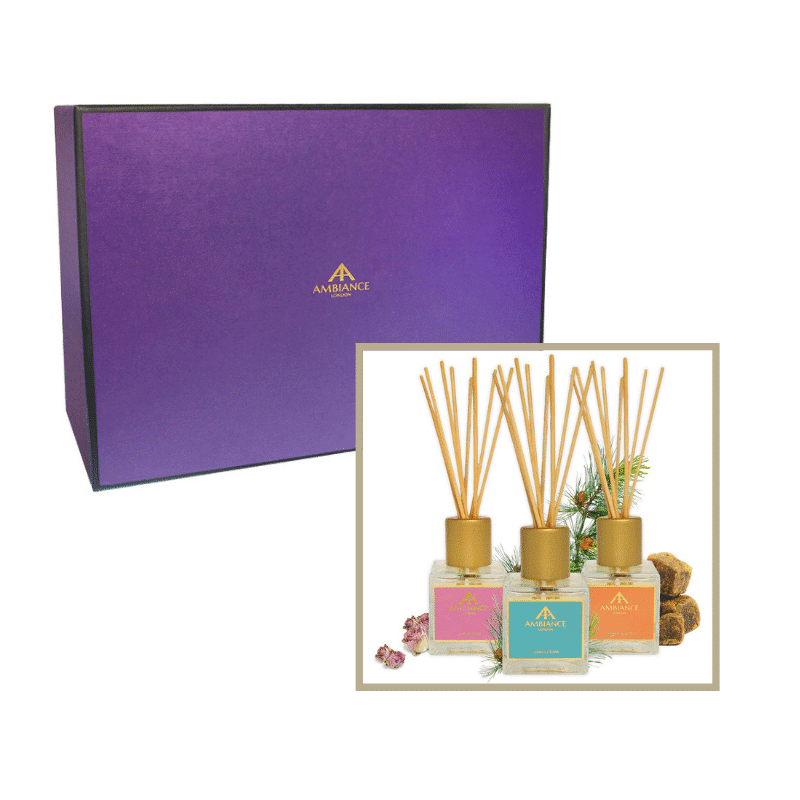 Gift Set of Ancienne Ambiance Scented Reed Diffusers