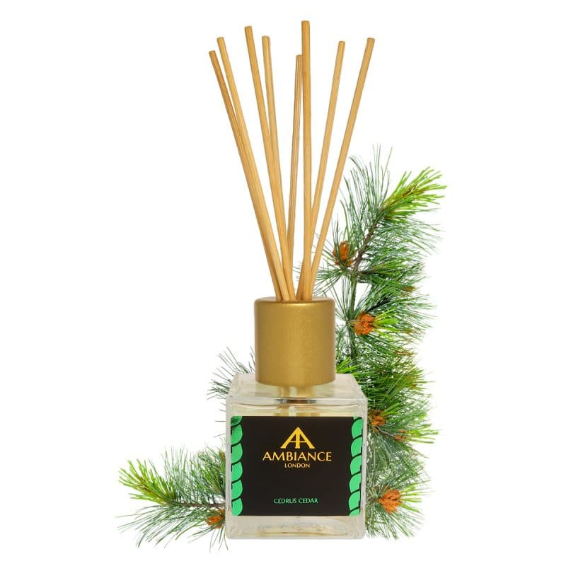 cedar scented reed diffuser - cedar reed diffuser - cedrus reed diffuser - home fragrances ancienne ambiance