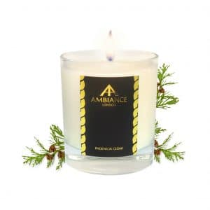 ancienne ambiance - Phoenicia Luxury Candle - Cedar Scented Candle