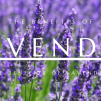 Benefits of Lavender for Sleeping