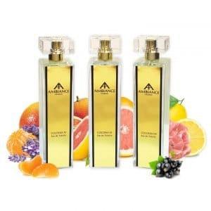 Ancienne Ambiance Niche Perfumes 100ml